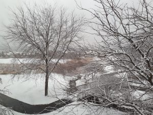It was snowing in Lake Geneva, WI, where the Forbeck Foundation meeting took place!